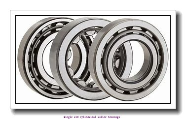 25 mm x 62 mm x 24 mm  NTN NUP2305ET2XC3U Single row cylindrical roller bearings