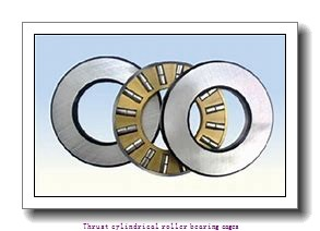 NTN K89307 Thrust cylindrical roller bearing cages
