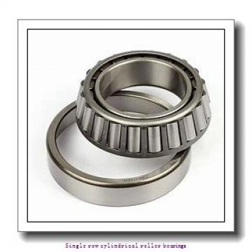 60 mm x 130 mm x 46 mm  NTN NUP2312EG1C3 Single row cylindrical roller bearings