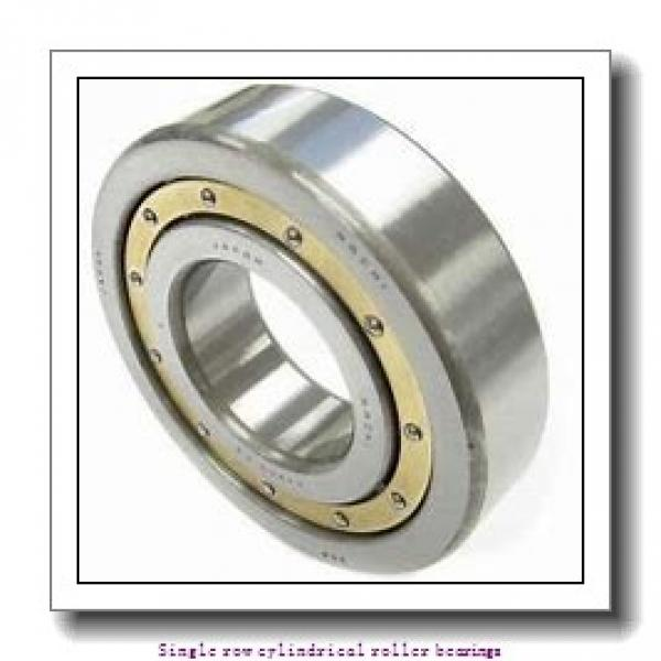 70 mm x 150 mm x 51 mm  NTN NUP2314 Single row cylindrical roller bearings #1 image