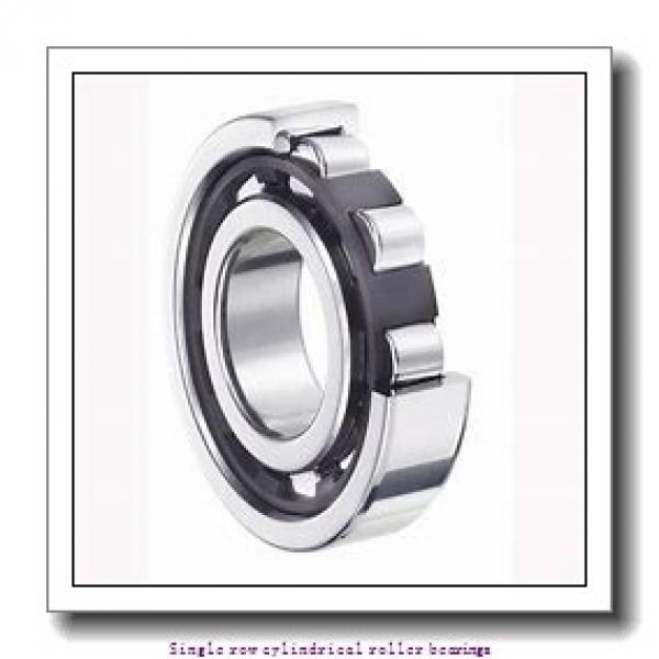 40 mm x 80 mm x 23 mm  NTN NUP2208U Single row cylindrical roller bearings #1 image